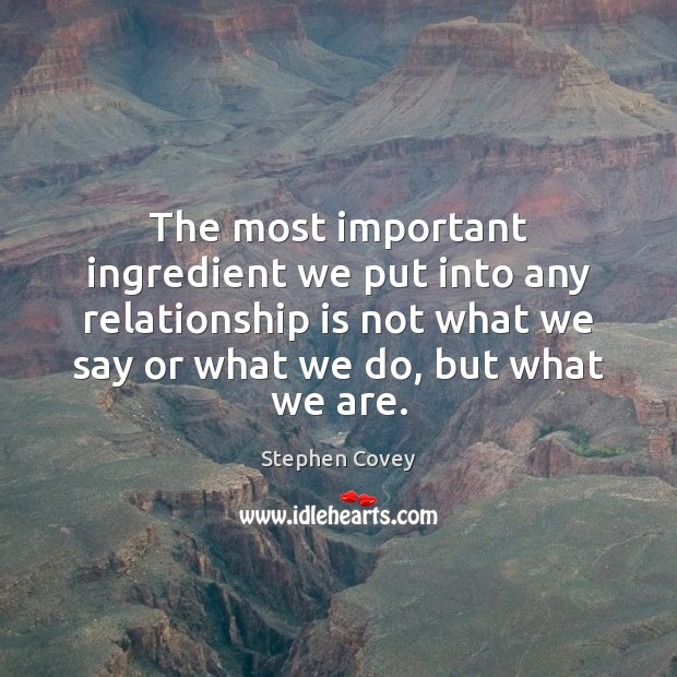 The most important ingredient we put into any relationship is not what Stephen Covey Picture Quote