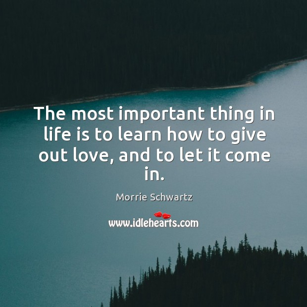 The most important thing in life is to learn how to give out love, and to let it come in. Morrie Schwartz Picture Quote