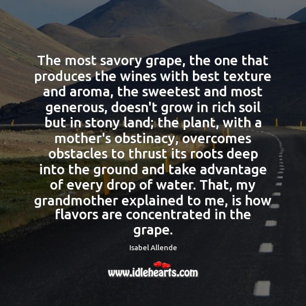 The most savory grape, the one that produces the wines with best Water Quotes Image