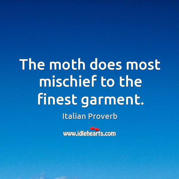 Image, The moth does most mischief to the finest garment.