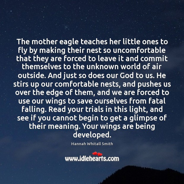 Image, The mother eagle teaches her little ones to fly by making their