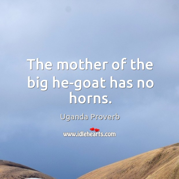 The mother of the big he-goat has no horns. Uganda Proverbs Image