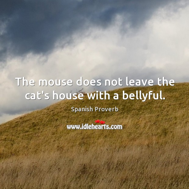 Image, The mouse does not leave the cat's house with a bellyful.