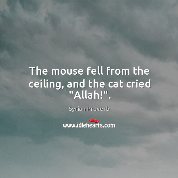 "The mouse fell from the ceiling, and the cat cried ""allah!"". Syrian Proverbs Image"