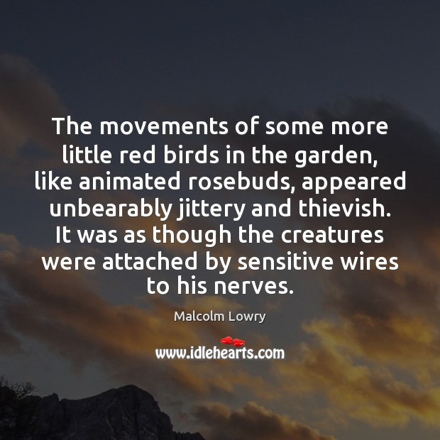 Image, The movements of some more little red birds in the garden, like