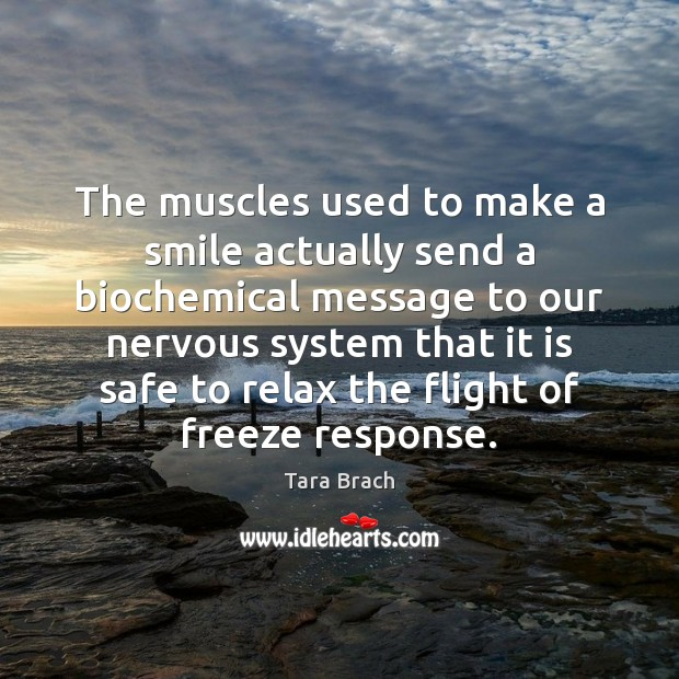 The muscles used to make a smile actually send a biochemical message Image