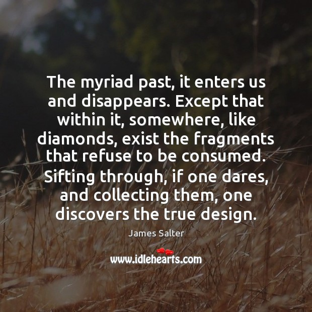 The myriad past, it enters us and disappears. Except that within it, James Salter Picture Quote