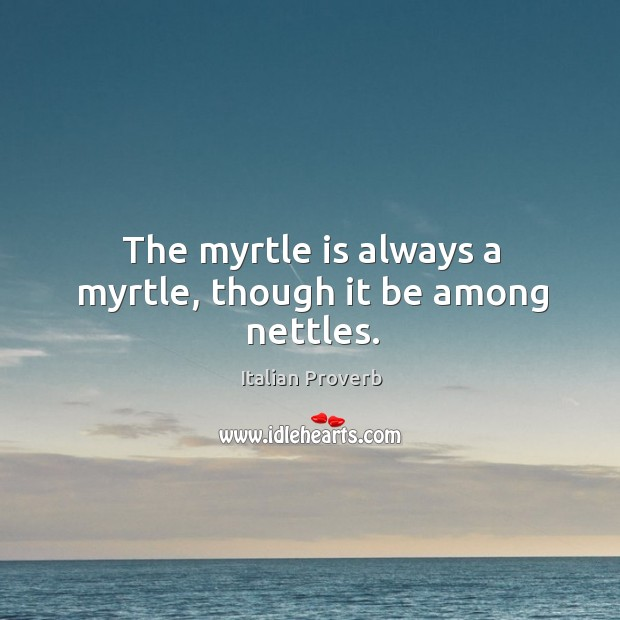 Image, The myrtle is always a myrtle, though it be among nettles.