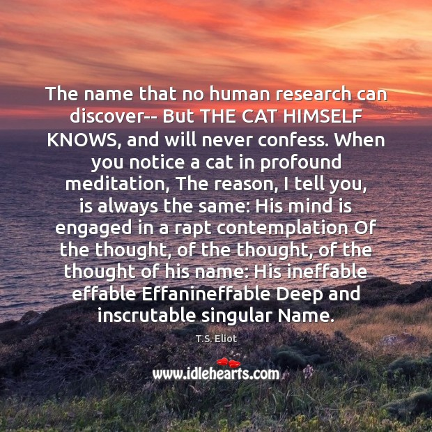 The name that no human research can discover– But THE CAT HIMSELF T.S. Eliot Picture Quote