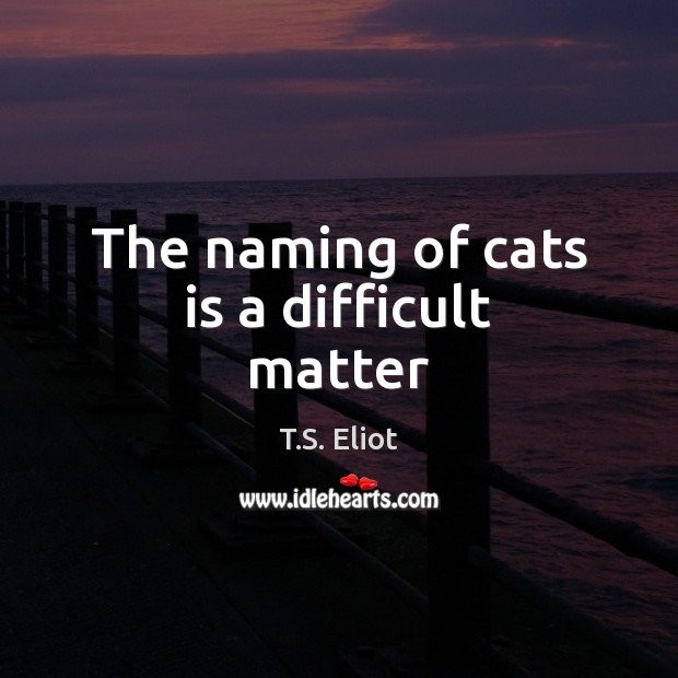 Image, The naming of cats is a difficult matter