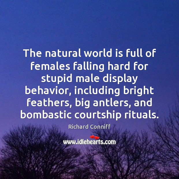 Image, The natural world is full of females falling hard for stupid male