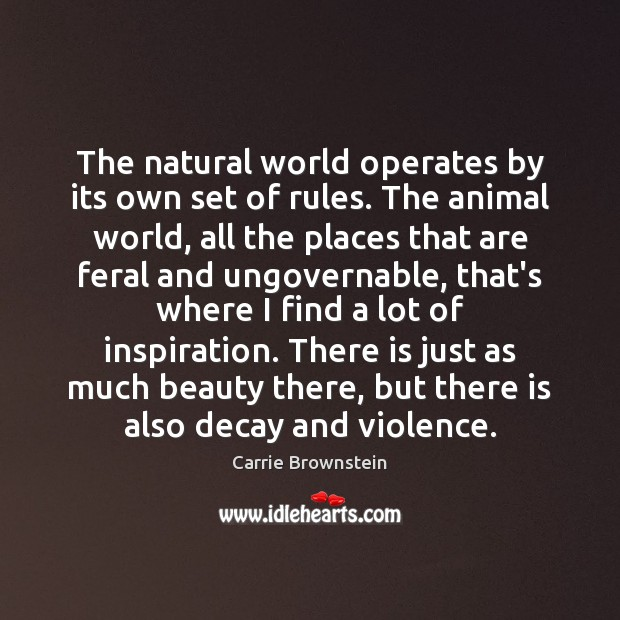The natural world operates by its own set of rules. The animal Image