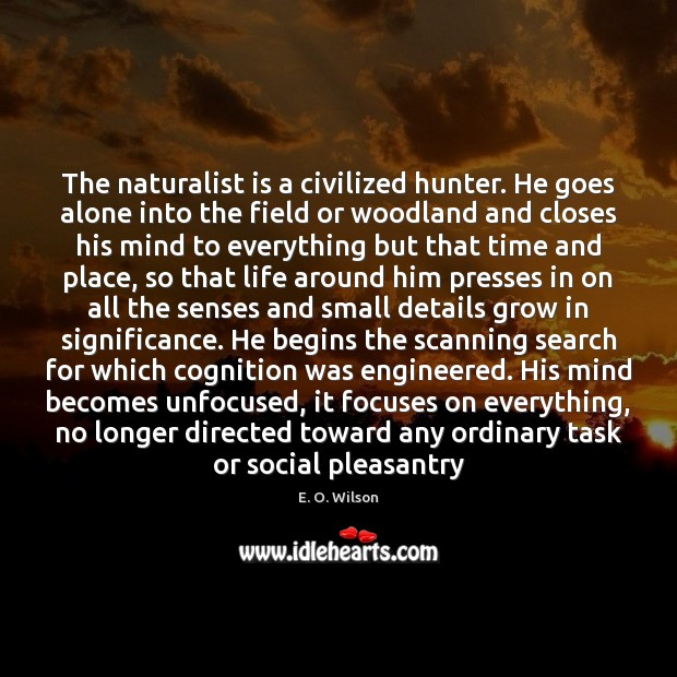 The naturalist is a civilized hunter. He goes alone into the field E. O. Wilson Picture Quote