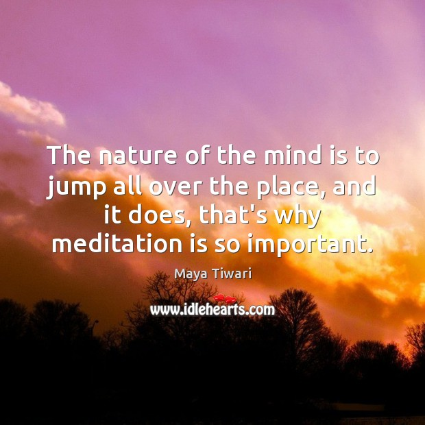 Image, The nature of the mind is to jump all over the place,