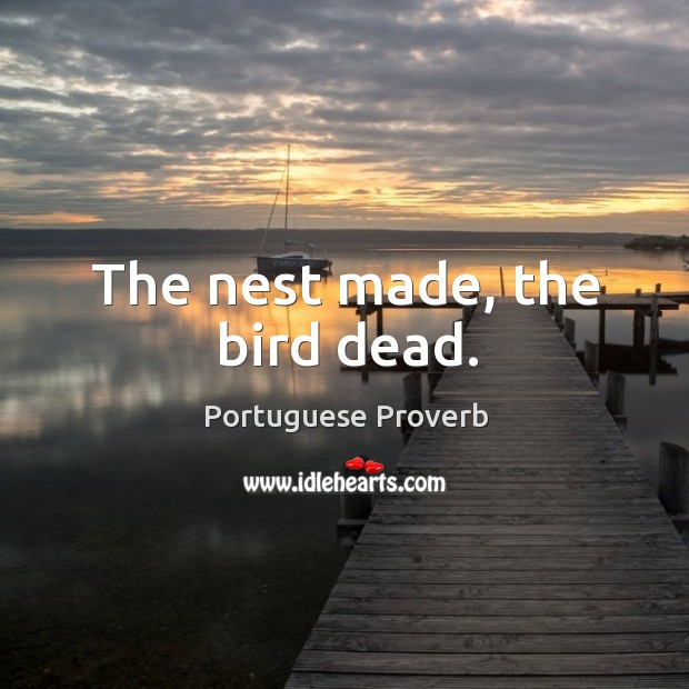 The nest made, the bird dead. Image