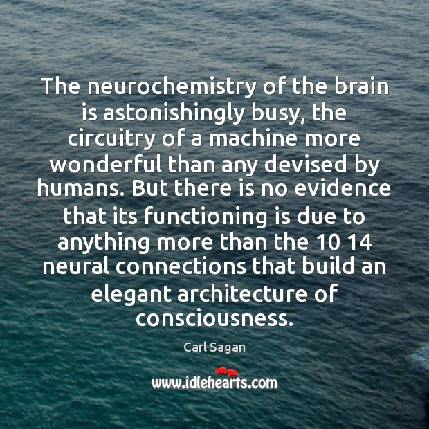 Image, The neurochemistry of the brain is astonishingly busy, the circuitry of a