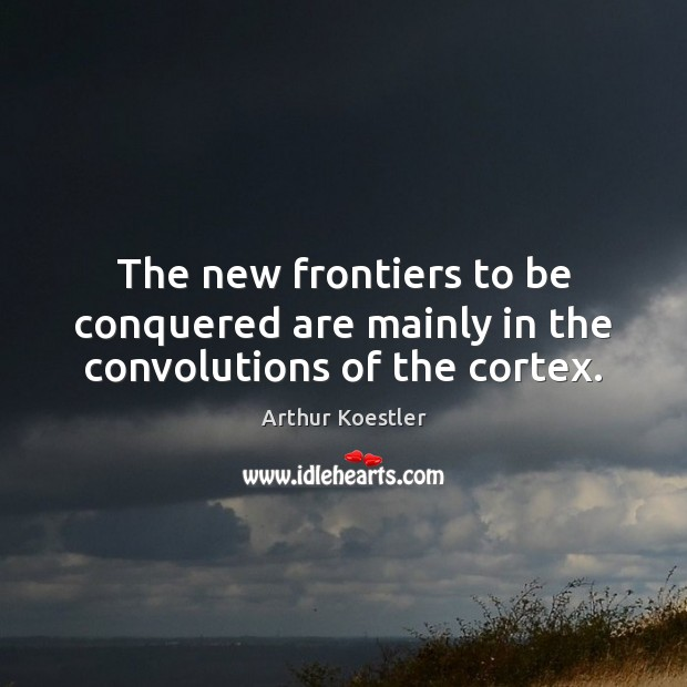 Image, The new frontiers to be conquered are mainly in the convolutions of the cortex.