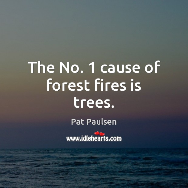The No. 1 cause of forest fires is trees. Image