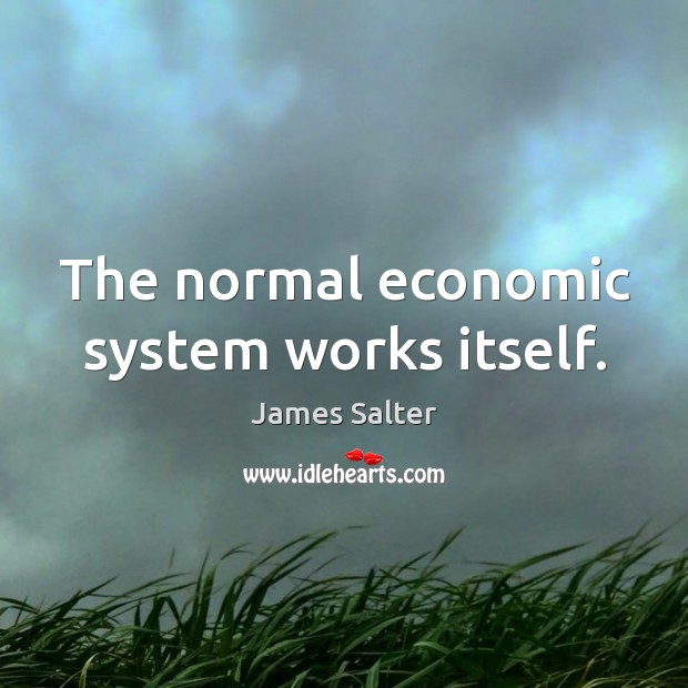 The normal economic system works itself. James Salter Picture Quote