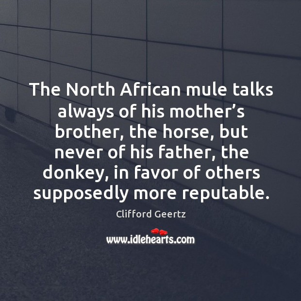 The north african mule talks always of his mother's brother, the horse, but never of his father Image