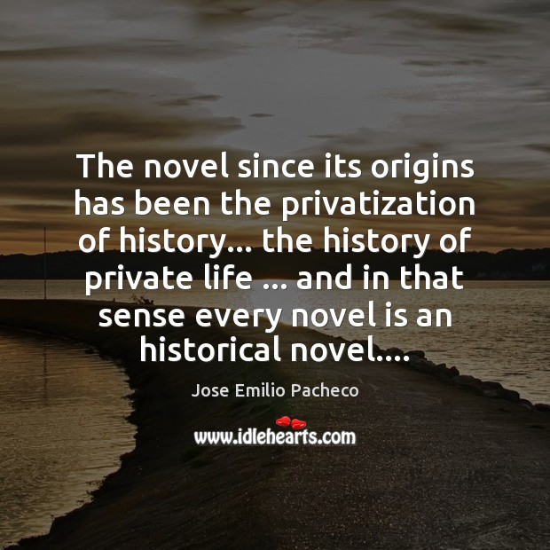 The novel since its origins has been the privatization of history… the Image