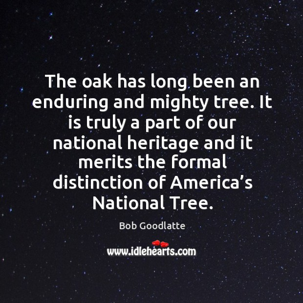 Image, The oak has long been an enduring and mighty tree. It is truly a part of our national