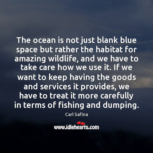 The ocean is not just blank blue space but rather the habitat Image
