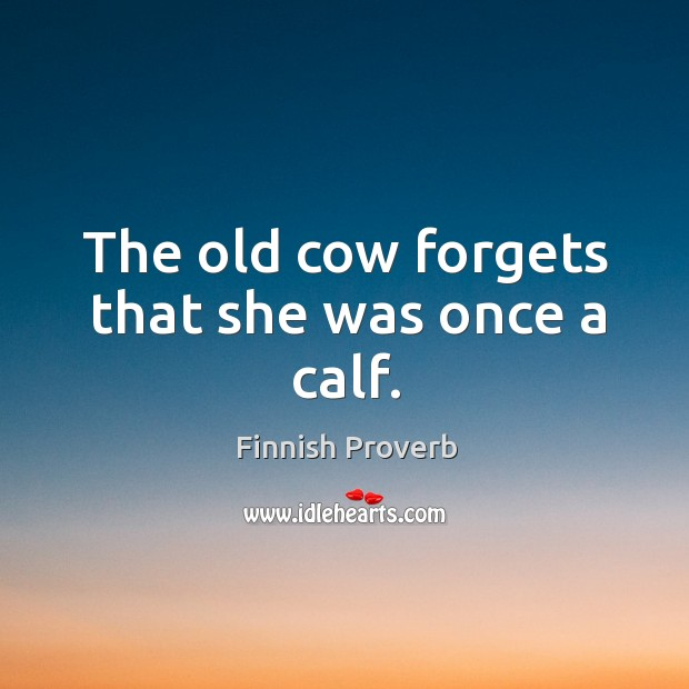 The old cow forgets that she was once a calf. Finnish Proverbs Image