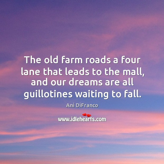 The old farm roads a four lane that leads to the mall, Ani DiFranco Picture Quote