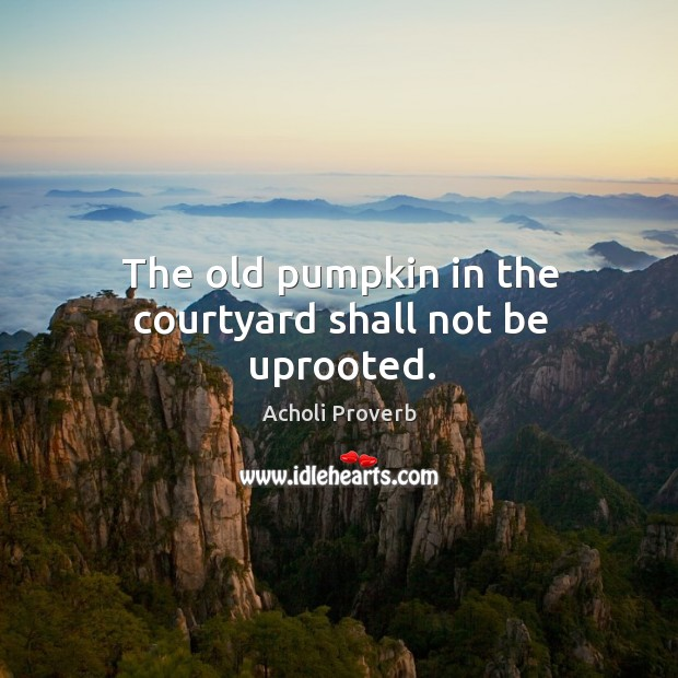 The old pumpkin in the courtyard shall not be uprooted. Acholi Proverbs Image