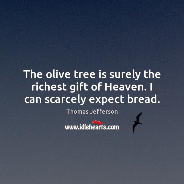 The olive tree is surely the richest gift of Heaven. I can scarcely expect bread. Image
