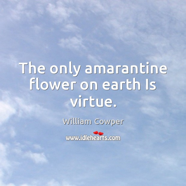 The only amarantine flower on earth Is virtue. William Cowper Picture Quote