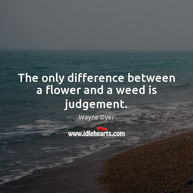 Image, The only difference between a flower and a weed is judgement.