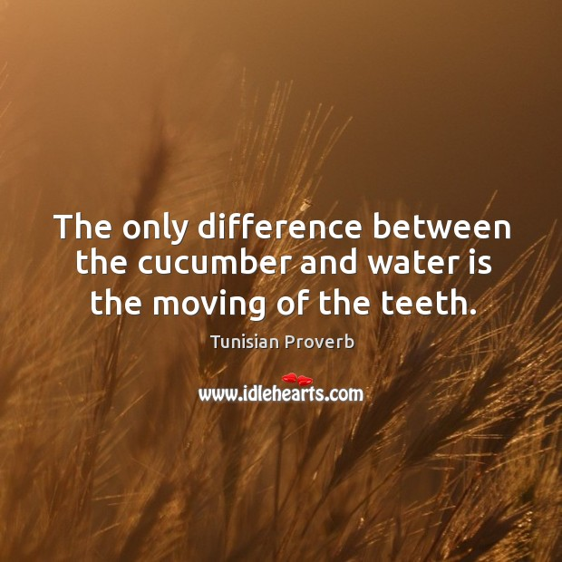 The only difference between the cucumber and water is the moving of the teeth. Tunisian Proverbs Image
