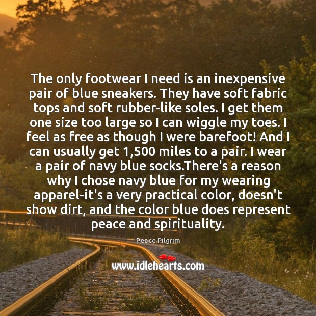 Image, The only footwear I need is an inexpensive pair of blue sneakers.