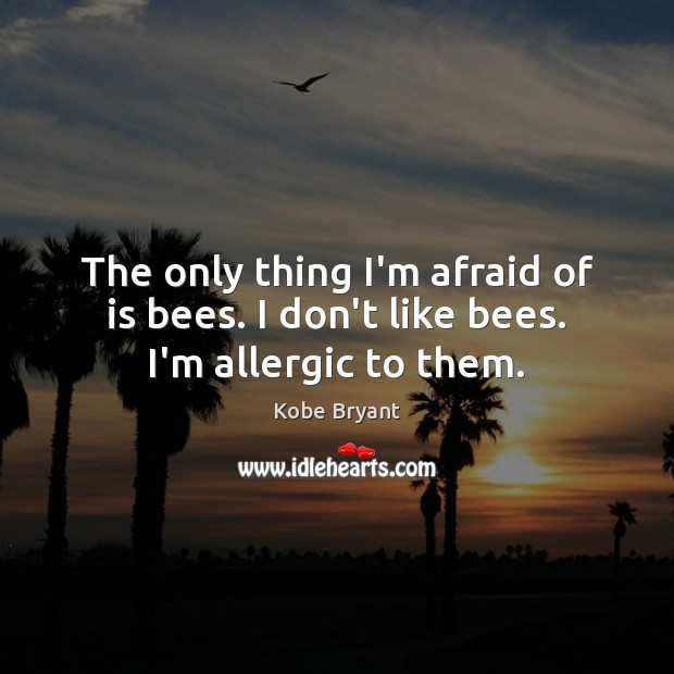 The only thing I'm afraid of is bees. I don't like bees. I'm allergic to them. Kobe Bryant Picture Quote