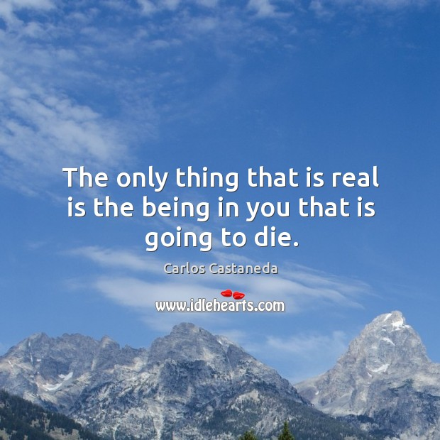 The only thing that is real is the being in you that is going to die. Image