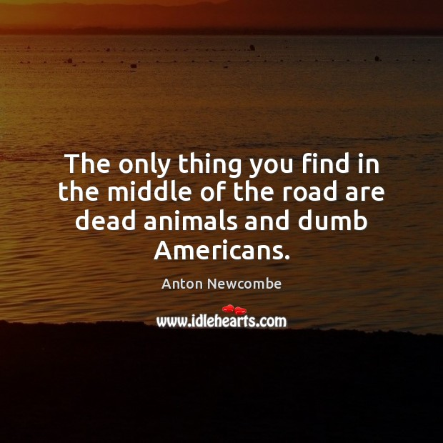 Image, The only thing you find in the middle of the road are dead animals and dumb Americans.