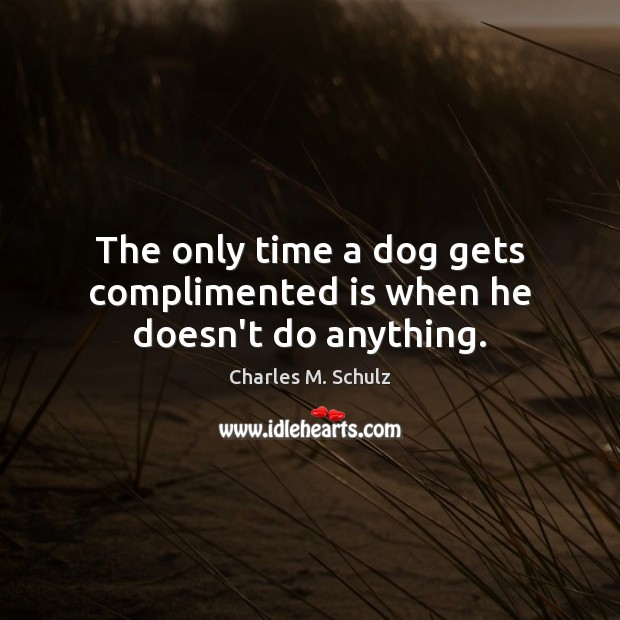 The only time a dog gets complimented is when he doesn't do anything. Image