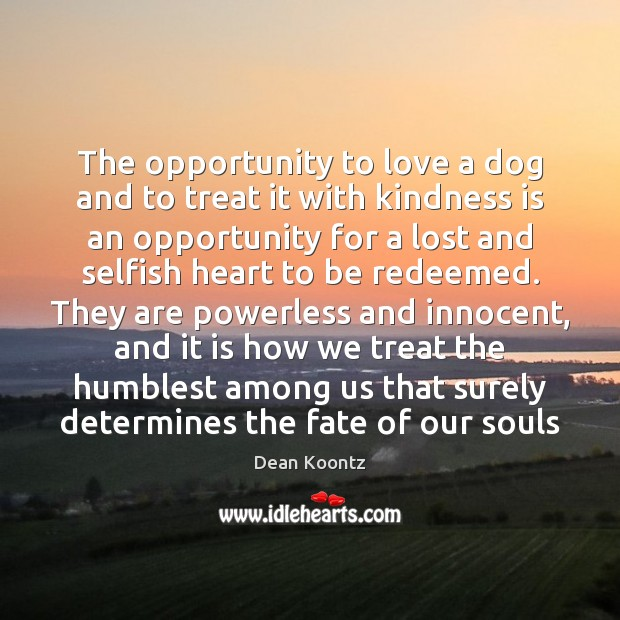 The opportunity to love a dog and to treat it with kindness Kindness Quotes Image
