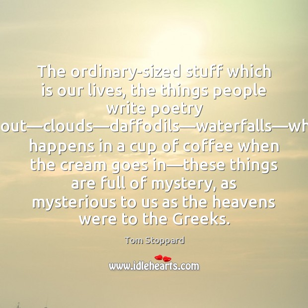 The ordinary-sized stuff which is our lives, the things people write poetry Image