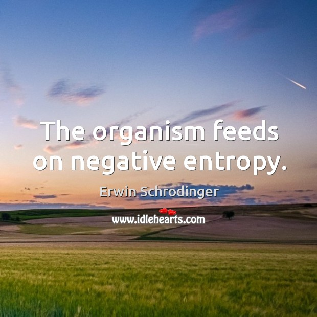 The organism feeds on negative entropy. Erwin Schrodinger Picture Quote