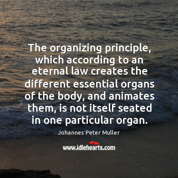 The organizing principle, which according to an eternal law creates the different essential organs of the body Image