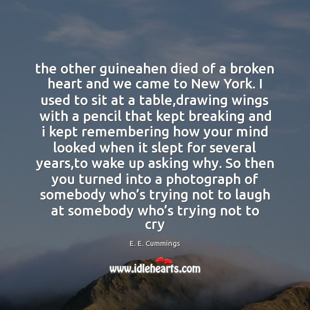 The other guineahen died of a broken heart and we came to Broken Heart Quotes Image
