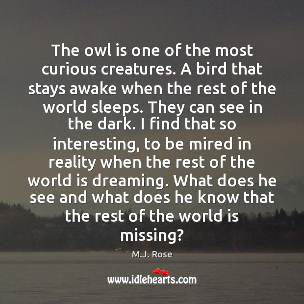 The owl is one of the most curious creatures. A bird that Image