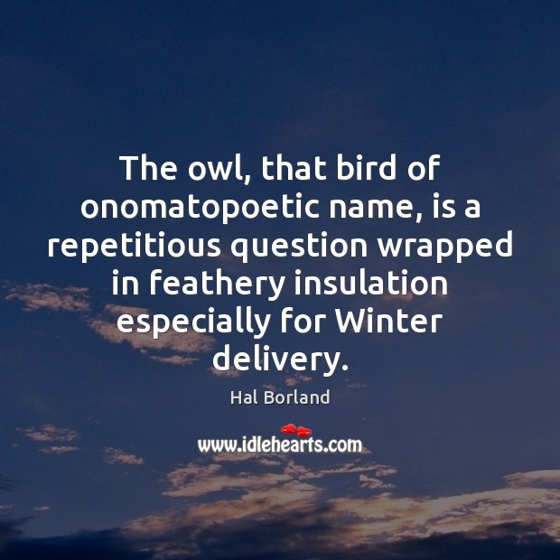 Hal Borland Picture Quote image saying: The owl, that bird of onomatopoetic name, is a repetitious question wrapped