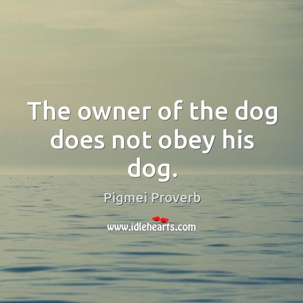Pigmei Proverbs