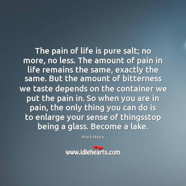 The pain of life is pure salt; no more, no less. The Mark Nepo Picture Quote