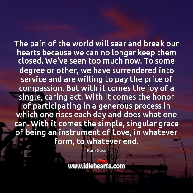 The pain of the world will sear and break our hearts because Ram Dass Picture Quote
