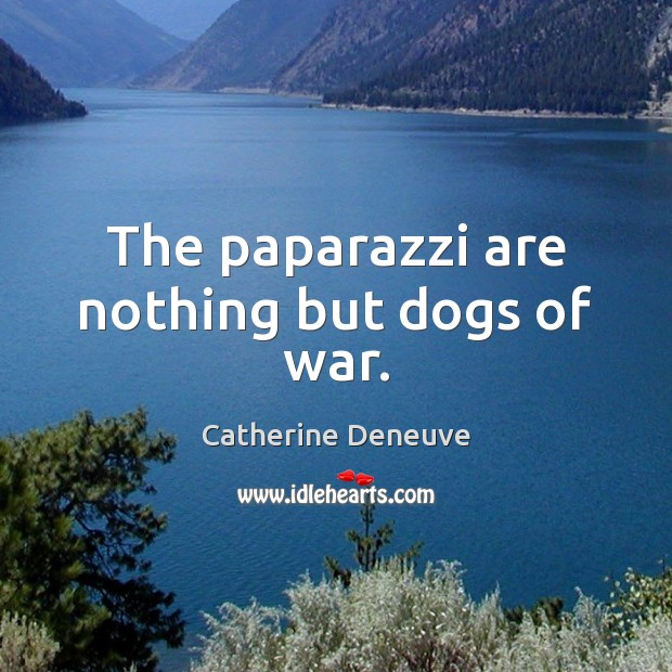 The paparazzi are nothing but dogs of war. Catherine Deneuve Picture Quote
